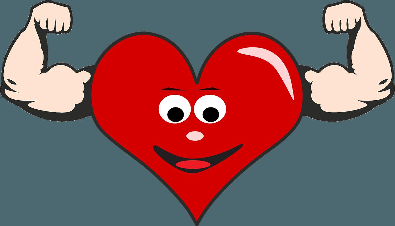 heart-865226_1280