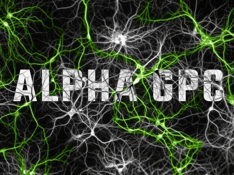 Alpha GPC – kolejne interesujące fakty!