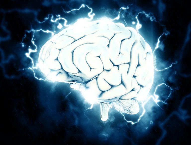 Cholina – niezwykły nootropic o szerokim spektrum działania