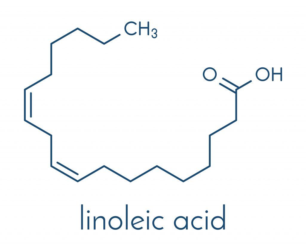 Wzór kwasu linolowego - podstawowego kwasu omega-6