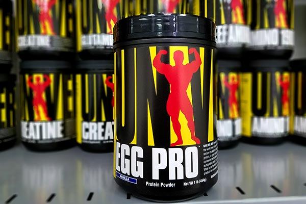 Egg Pro w nowej odsłonie