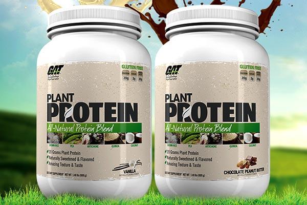 Plant Protein – nowa, roślinna odżywka białkowa od GAT
