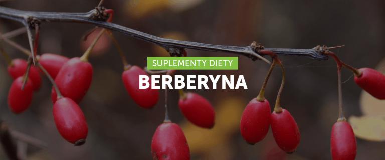 Berberyna i jej korzyści zdrowotne