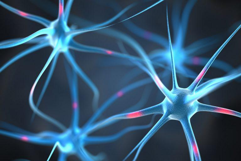 Pregnenolon- kolejne interesujące fakty