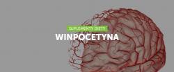 Winpocetyna – lepsza pamięć i więcej energii!