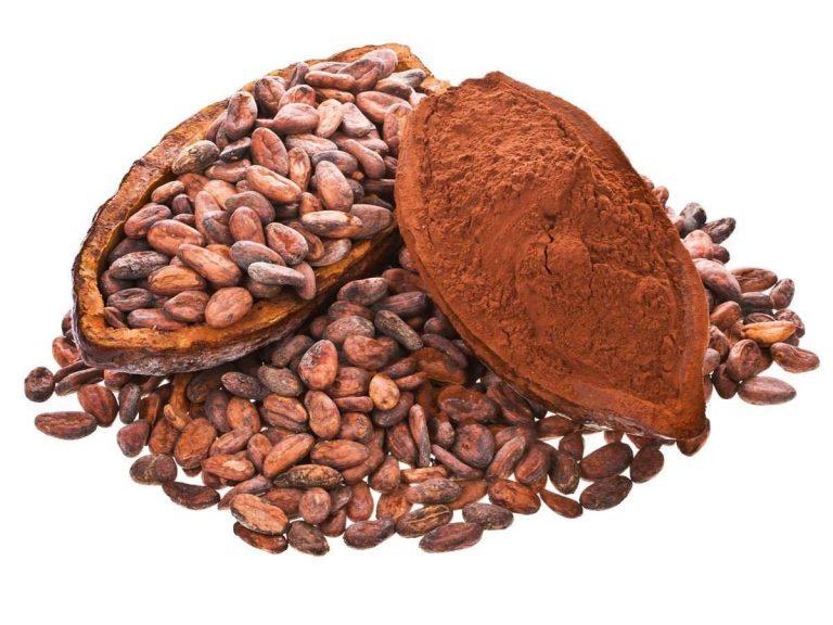 Słodka nowość od Giant Sports – Keto Cocoa!