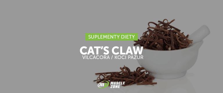 Cat's Claw i jego pozytywny wpływ na nasz układ odpornościowy!