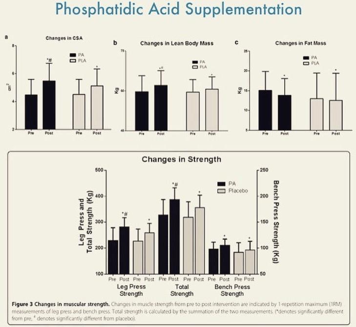 Wpływ suplementacji kwasu fosfatydowego na zmiany w masie ciała, zarówno tłuszczowej jak i beztłuszczowej, oraz jego wpływ na siłę