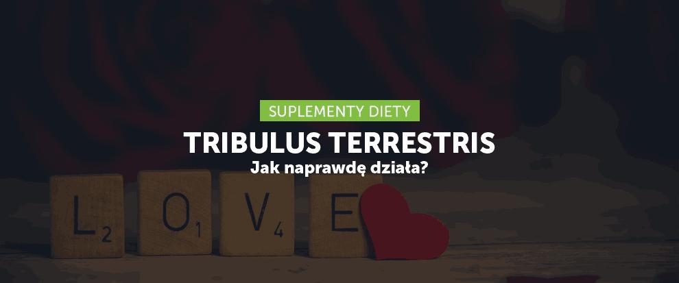 Tribulus – jak faktycznie działa?