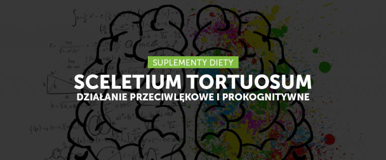 Sceletium Tortuosum – przeciwdepresyjne ziele wspierające pracę mózgu