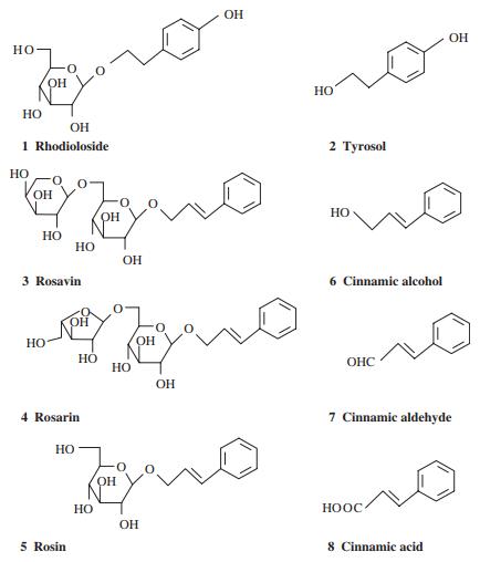 Rhodiola Rosea - działanie salidrozydów