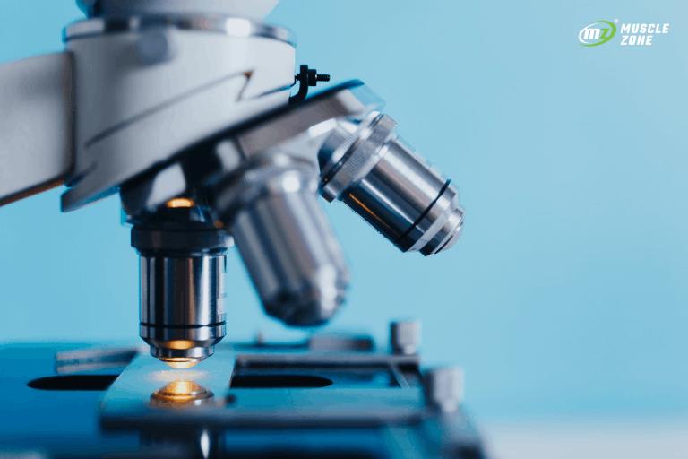 #3 Badania suplementów diety – Treonian Magnezu
