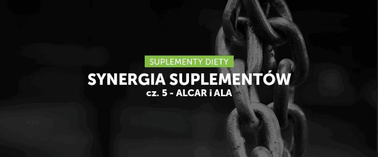 Synergia suplementów cz. 5 – ALCAR i ALA
