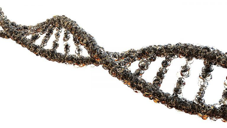 Wysoki poziom homocysteiny – jak sobie z nim radzić?