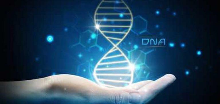 Suplementacja a geny