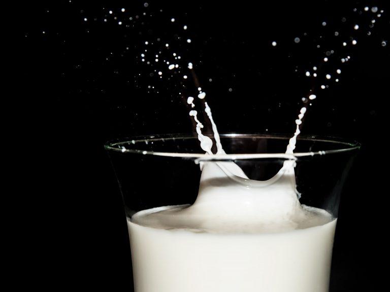 Mleka roślinne i zwierzęce – wybierz najlepsze mleko dla siebie!
