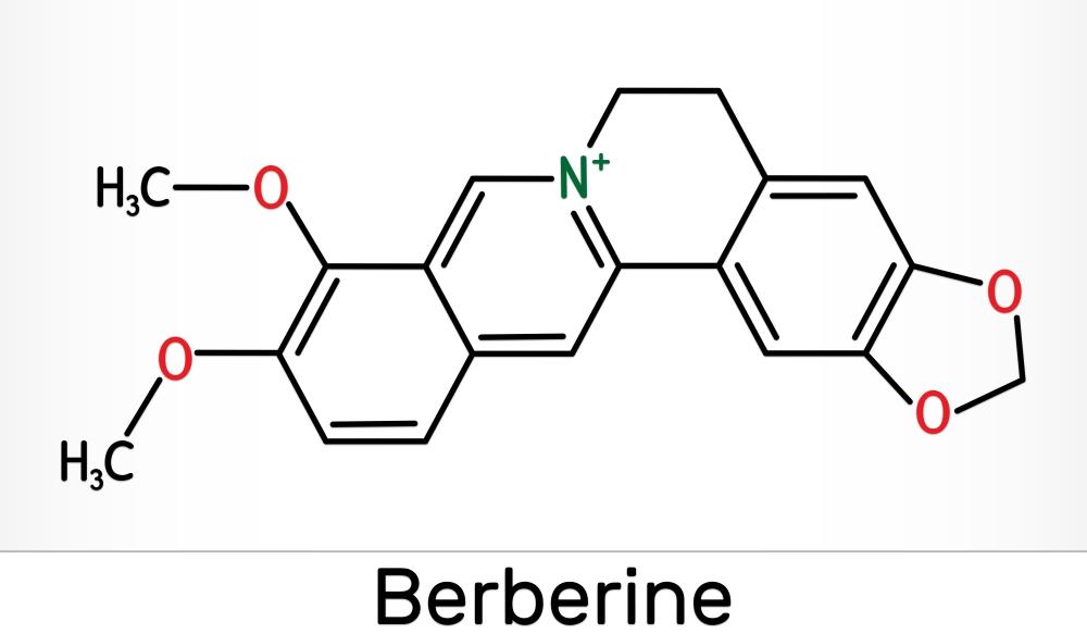 Wzór Berberyny