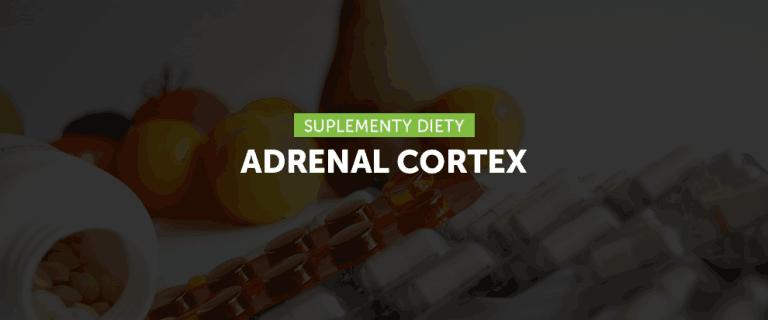Adrenal Cortex – preparaty z ekstraktami kory nadnerczy