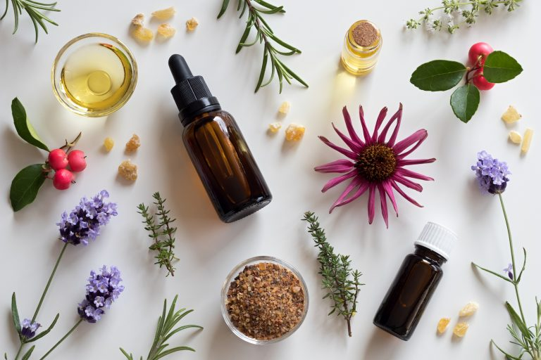 Bottles of essential oil with rosemary thyme creeping thyme echinacea wintergreen lavender myrrh and frankincense on a white background