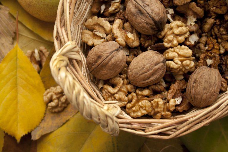 Dieta bogata w orzechy a ryzyko chorób układu sercowo-naczyniowego