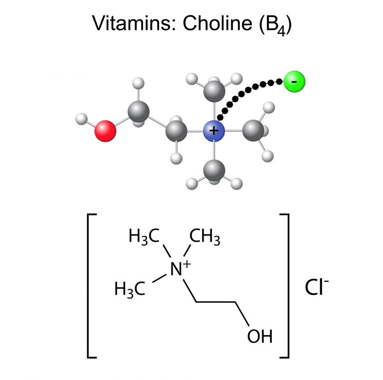 Structural chemical formula and model of vitamin choline - b4, 3d and 2d illustration, isolated on white, vector, eps 8