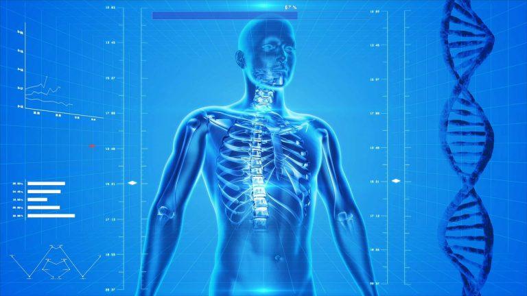 Czy wysoka konsumpcja białka negatywnie wpływa na kości?