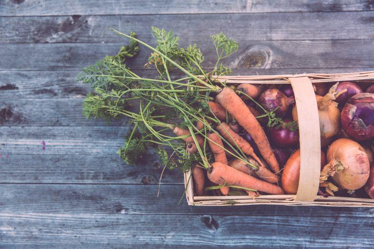 Niedobory witaminy B12 u wegan i wegetarian