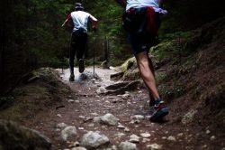 Długotrwały trening aerobowy a poziom testosteronu u mężczyzn