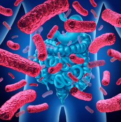 W jaki sposób twój mikrobiom jelitowy wpływa na Twoje zdrowie