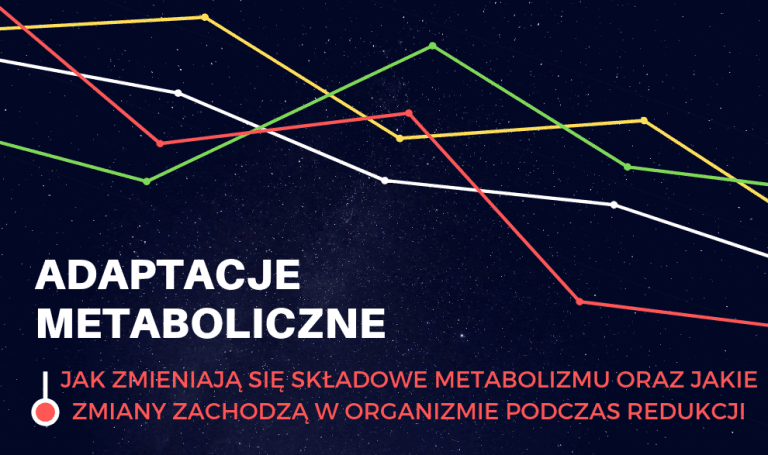 Adaptacje Metaboliczne Część 2: Spowolniony metabolizm