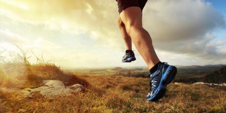L-karnityna – jak sprawić aby usprawniła odchudzanie oraz sprawność wysiłkową