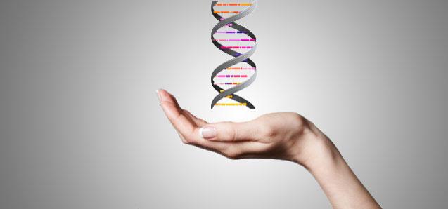 Kortyzol i epigenetyka. Jak stres może zmienić Twoje geny.