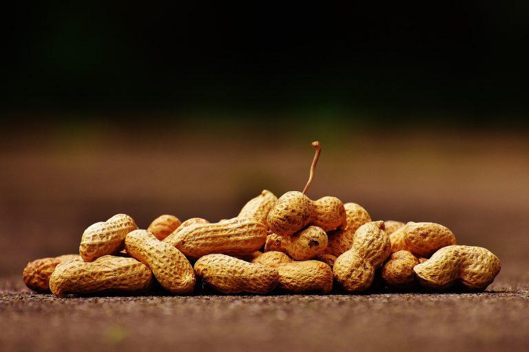 Orzeszki ziemne – zdrowsze niż myślisz