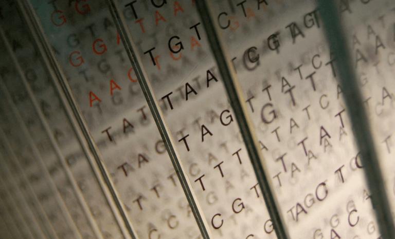 Analiza polimorfizmów pojedycznego nukleotydu, czyli jak możesz już rozgryźć swoją odmienność.