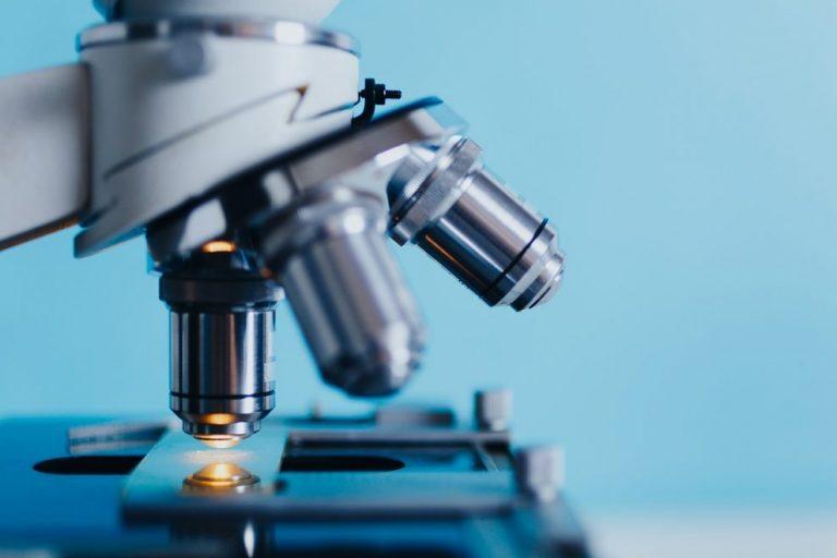 #6 Badania suplementów diety – Probiotyki z Bifidobacterium