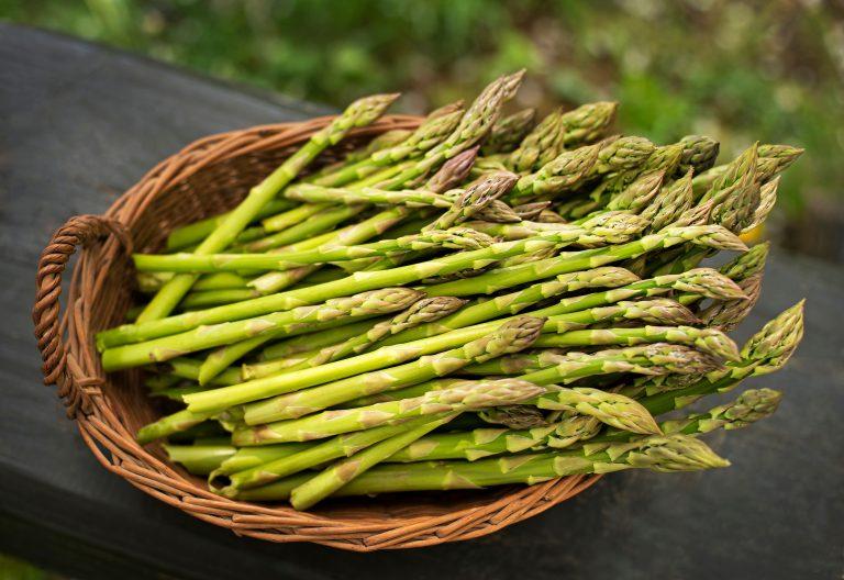 Szparagi – sezonowy skarb natury i jego wartość zdrowotna