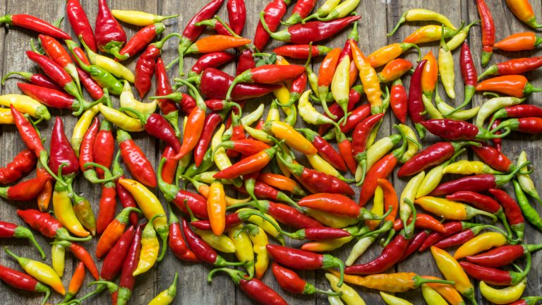 Uważaj z ostrością – chilli zabija czy ratuje życie?
