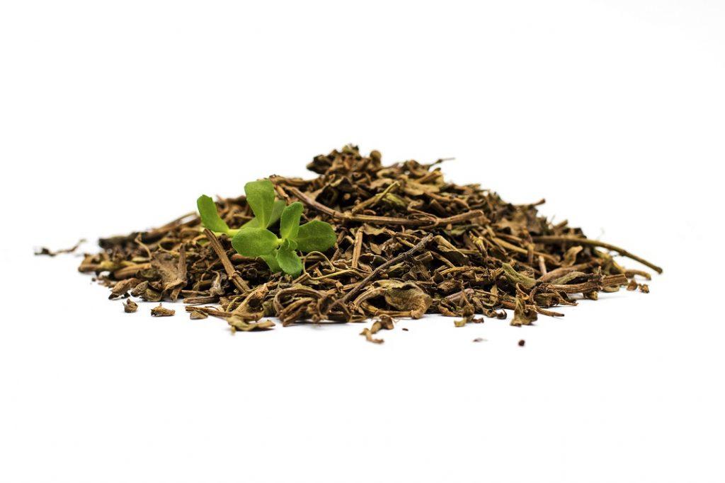 Ususzone liście i korzenie Bacopa Monnieri z których ekstrahowane są bakozydy