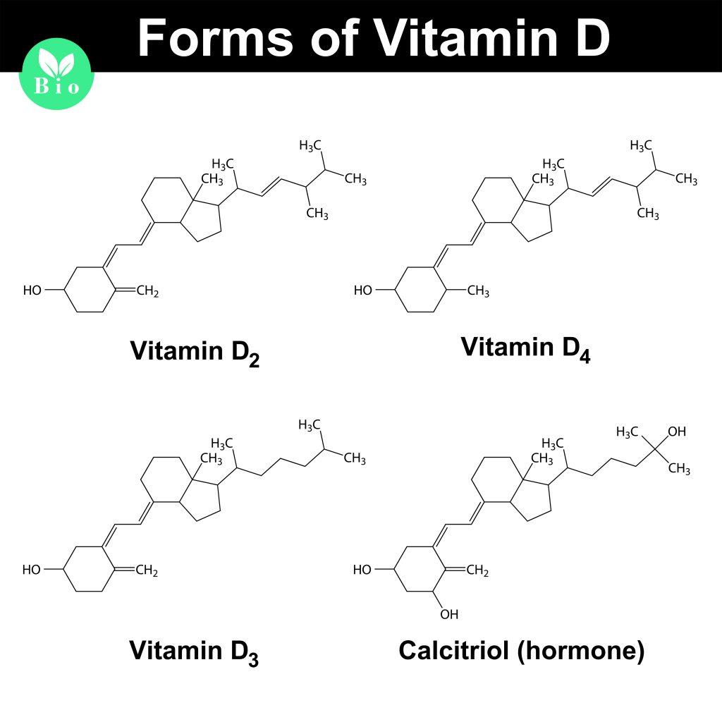 Wzory strukturalne różnych form Witaminy D