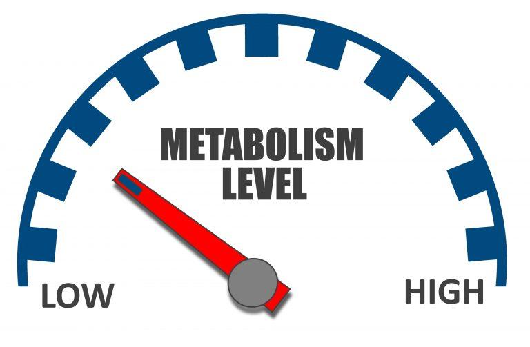 Czym jest elastyczność metaboliczna i jak ją osiągnąć?