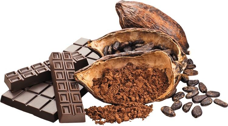 Teobromina – cenny składnik kakao na wydajniejszą pracę umysłową