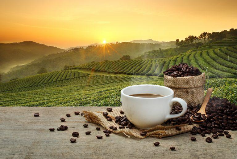 Czy 25 filiżanek kawy szkodzi?
