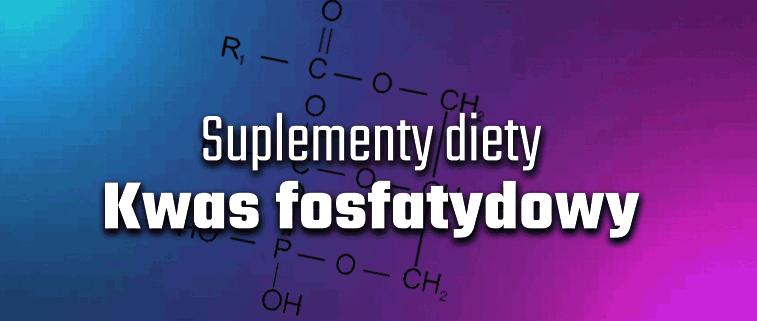 Kwas fosfatydowy – panaceum na budowę siły mięśni!