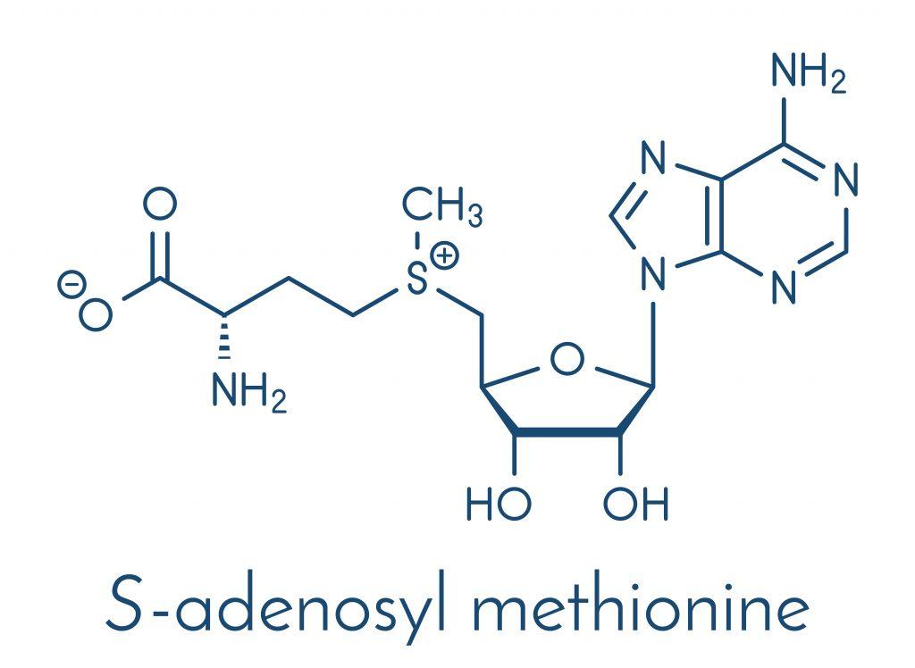 Wzór strutkuralny SAMe (S-adenozylometioniny)