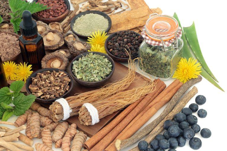 Adaptogeny – jak wpływają na nasze zdrowie?