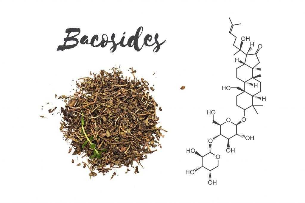 Bakozydy - składniki aktywne Bacopa Monnieri