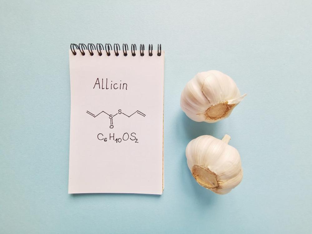 Allicyna - główny składnik aktywny czosnku