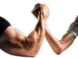 Testosteron – czy sam obniżasz jego produkcję?