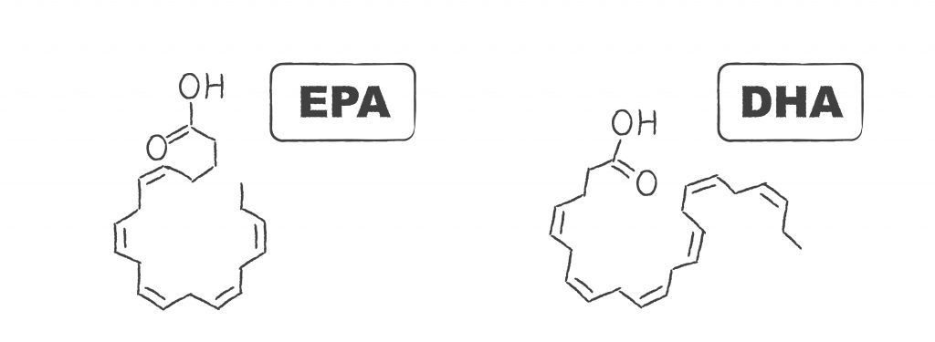 Kluczowe kwasy Omega 3 - EPA i DHA