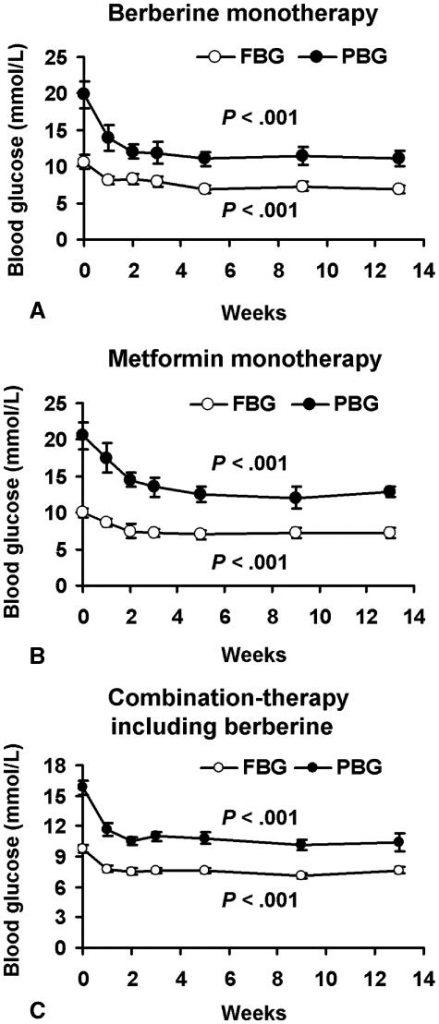 Porównanie efektywności berberyny i metforminy w zmniejszaniu poziomu glukozy na czczo (FBG) oraz po posiłku (PBG). Jak widać, berberyna jest równie efektynwa a w zależności od przedziału czasowego może być wręcz bardziej efektywna od samej metforminy [Źródło: https://www.ncbi.nlm.nih.gov/pmc/articles/PMC2410097/]